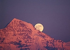 The moon rises on June 10 over the Mönch summit (Fritz Bieri)