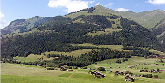 The Swiss countryside is diminishing by around 16,000 hectares a year