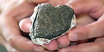 The meteorite could yield important information about Mars
