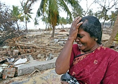 More than 30,000 Sri Lankans died and 500,000 lost their homes due to the tsunami