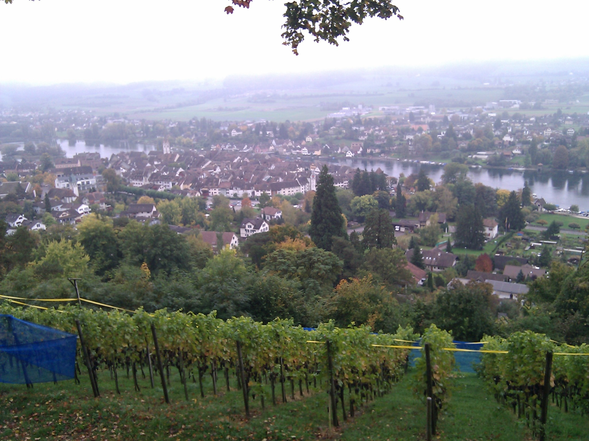 A view of Stein am Rhein that I didn't want to have--because it meant I took the wrong trail.