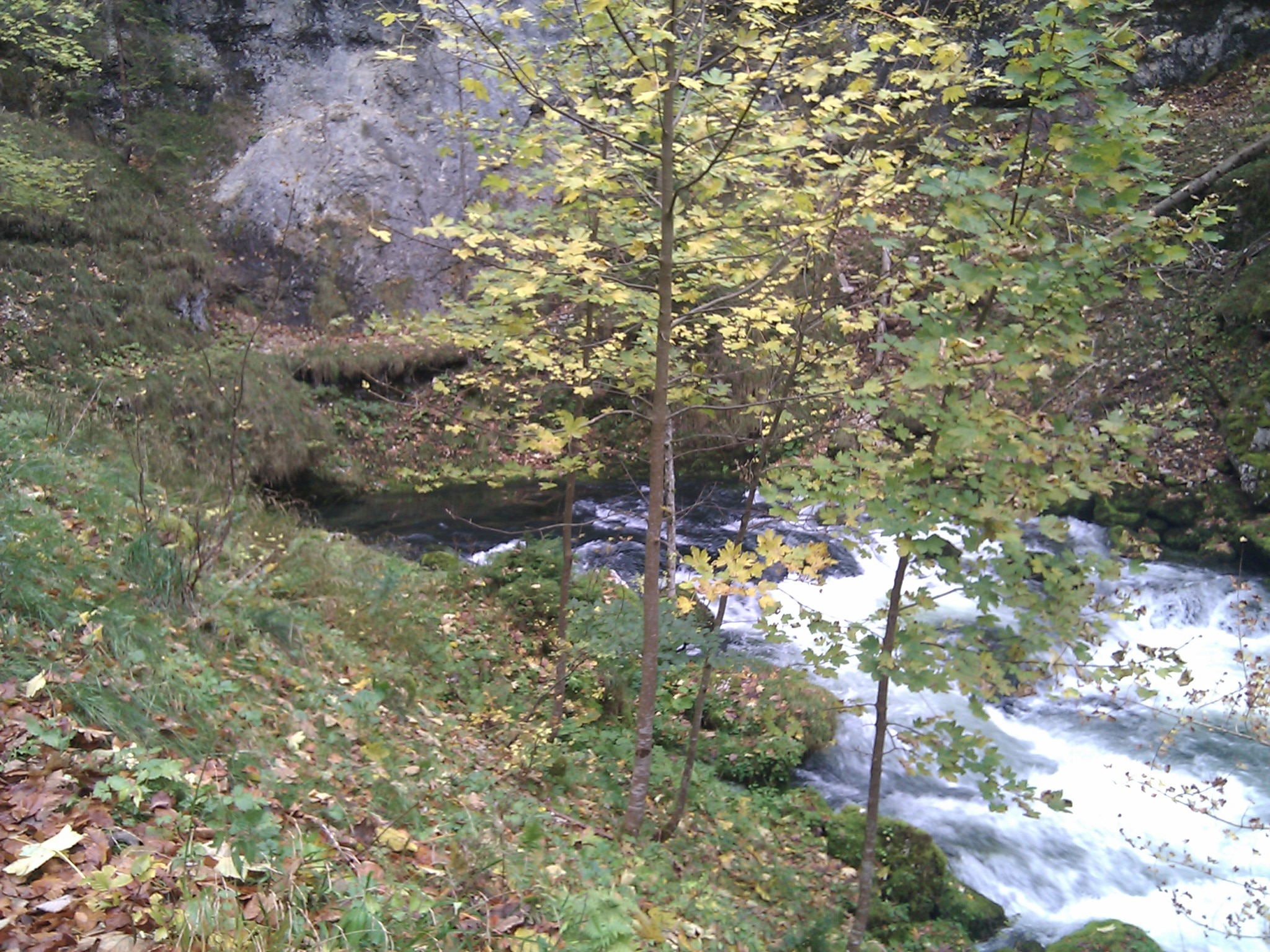 Where the River Orbe surges from the ground after several kilometres underground.