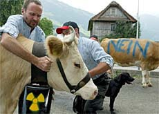 Residents of canton Nidwalden were strongly opposed to the nuclear waste plan
