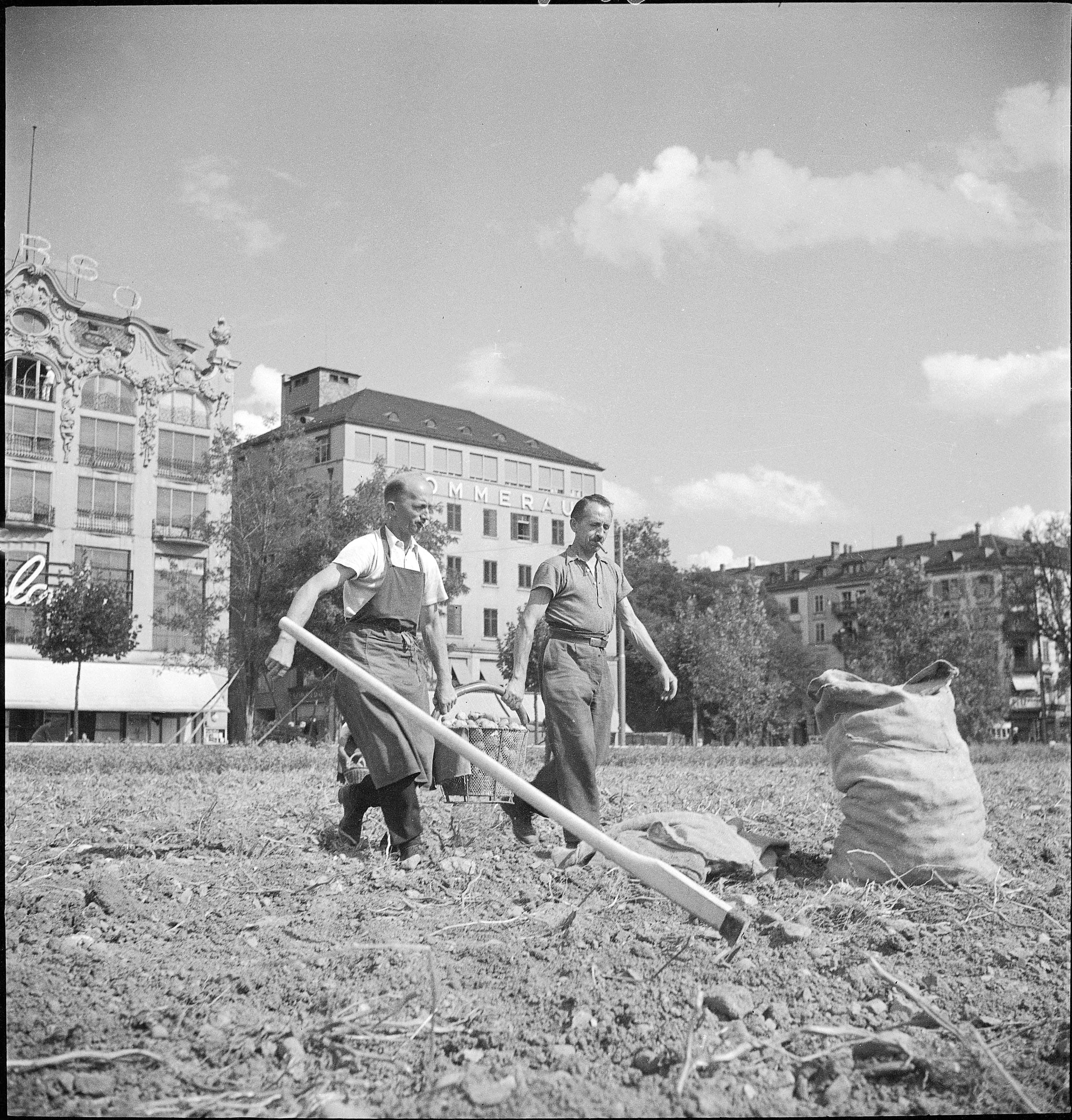 Farming at Bellevue, Zurich, 1941  Providing enough food for the population is a theme which appears frequently in the news bulletins of the SWS. The information broadcast varies between reassuring updates about the self-sufficiency of Switzerland and the sacrifies made by the population. (Student: William Yoakim)