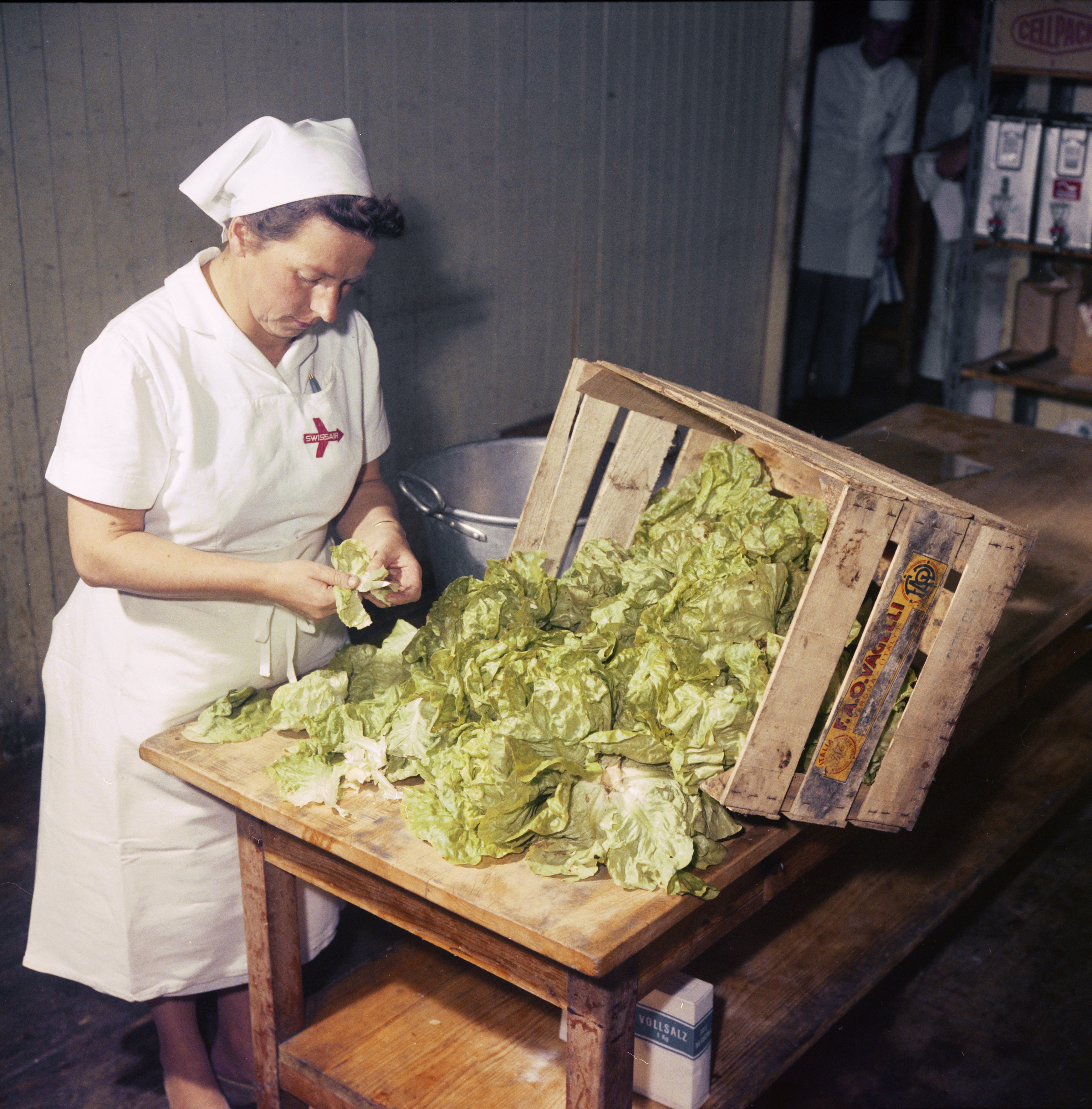 A caterer cuts up cabbages in Kloten, 1960