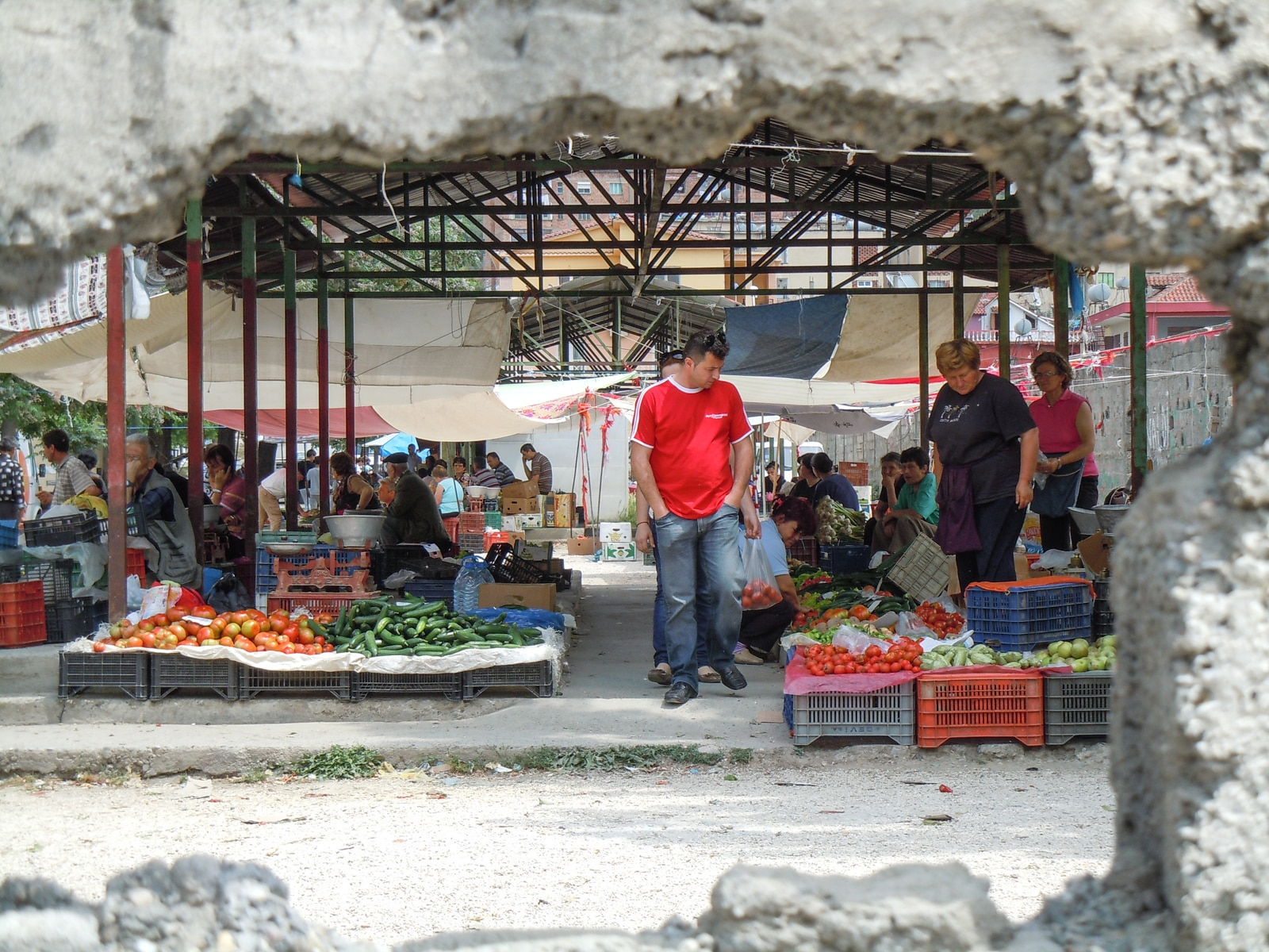 Fresh tomatoes, cucumbers, plums and cherries: a farmers' market in Lushnja in central Albania