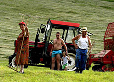 Farmers in Slovenia's Pomurje region