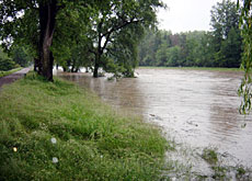 Tamed rivers such as the Limmat regularly flood surrounding areas (geroldswil.ch)