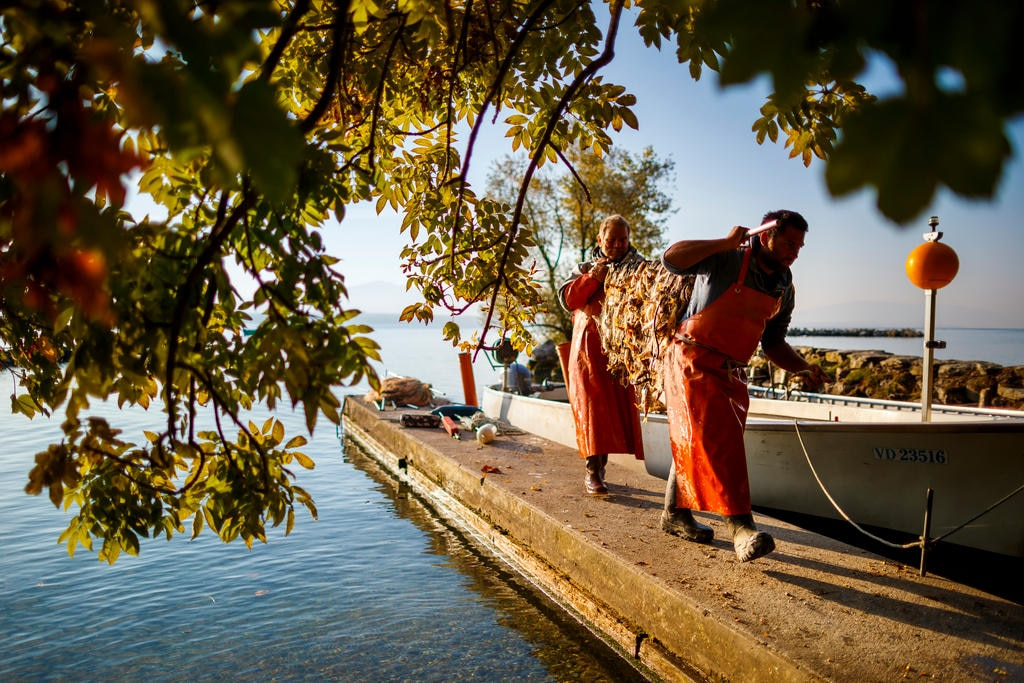 Two fishermen walk along a dock with their net in their hands