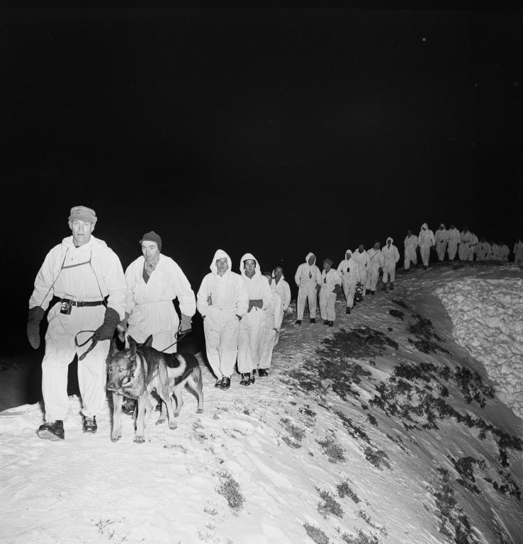 A columm of people in white walking with dogs over the ridge in the dark