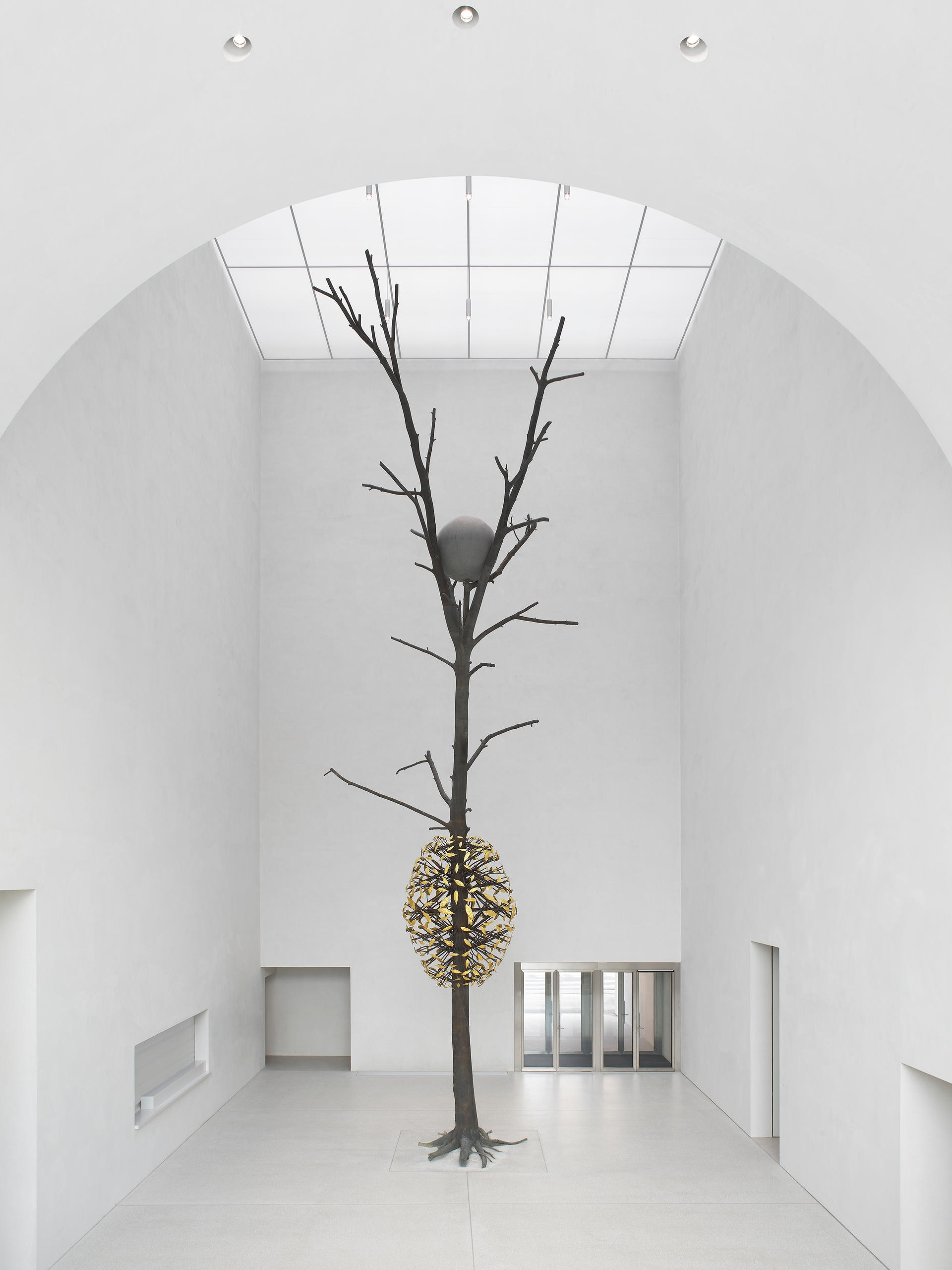 Giuseppe Penone, Luce e ombra, 2011 in the MCB-A hall