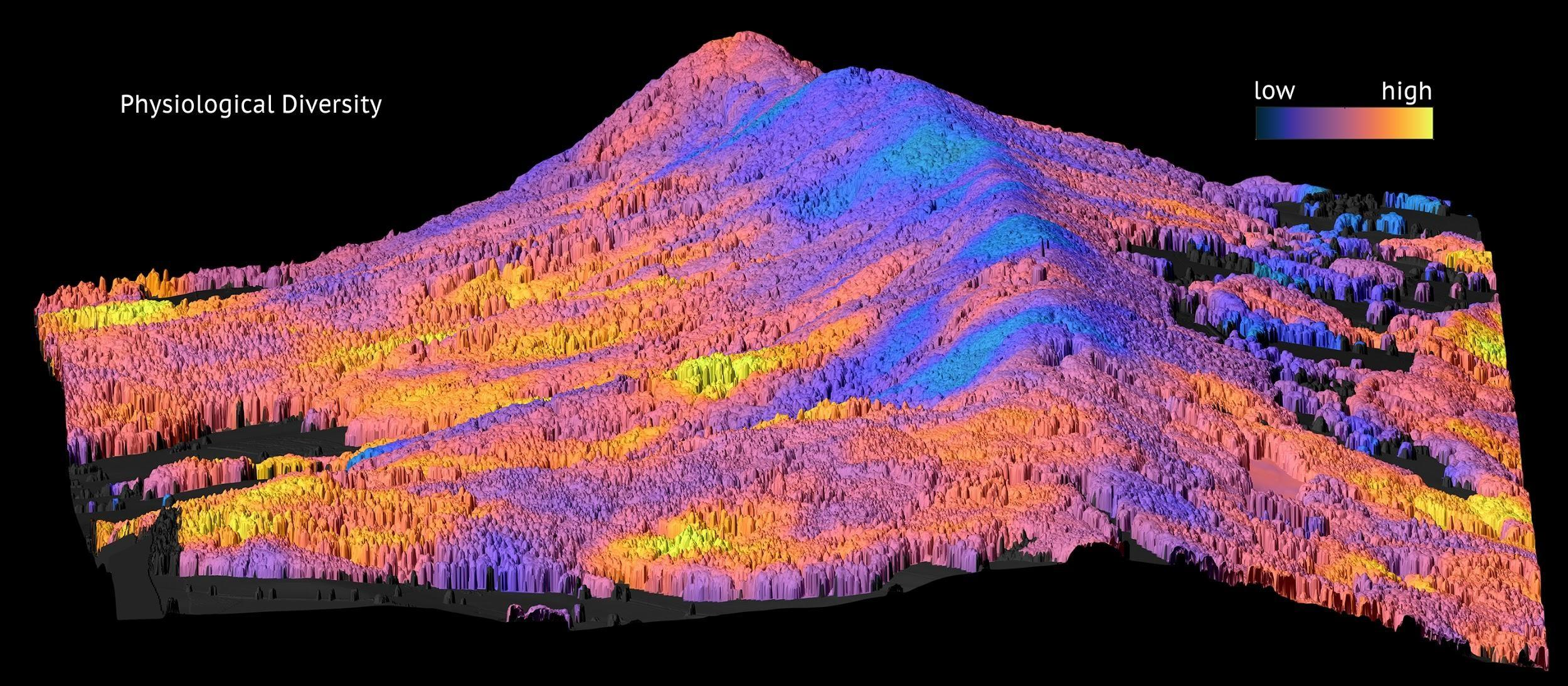 A map of forest diversity made with an airborne imaging spectrometer
