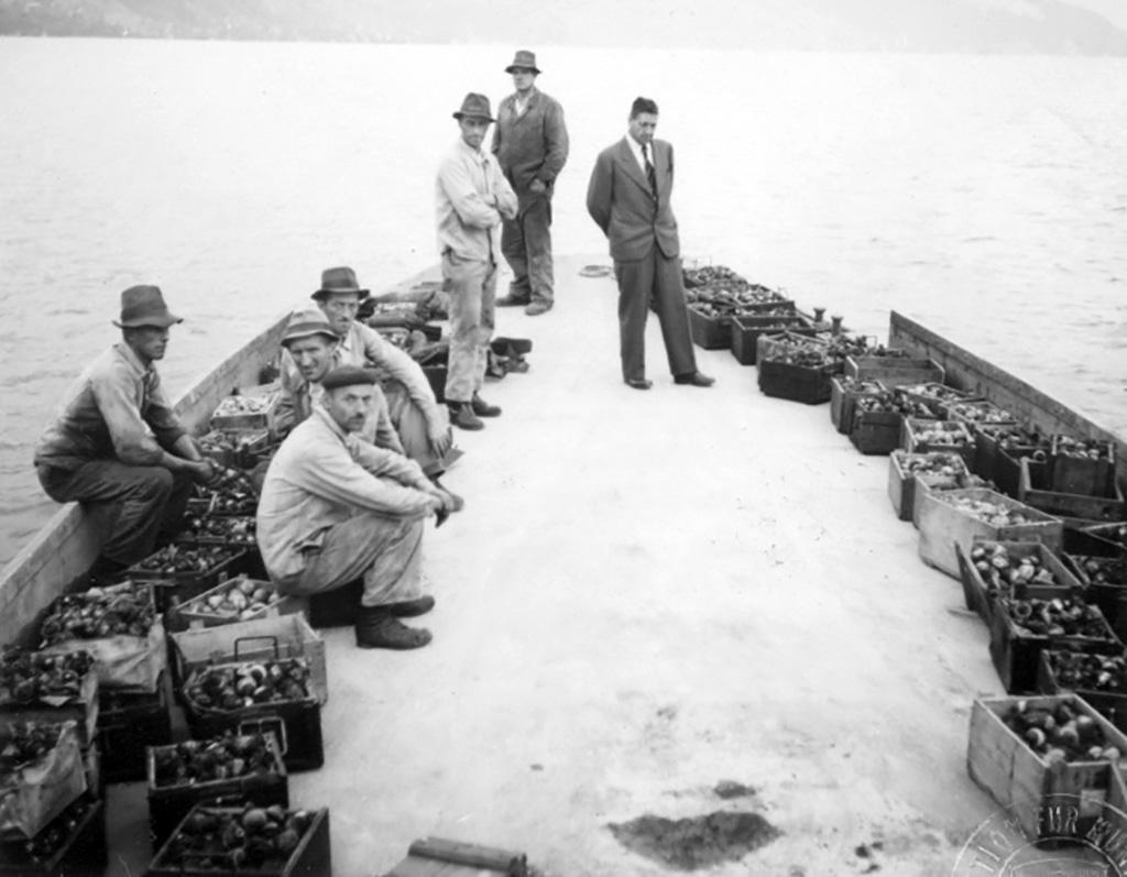 Men on boats laden with explosives ready to be dumped into Lake Thun (1948/1949)