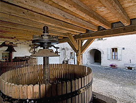 The Romans used to make wine at Manoir d'Hermance 2,000 years ago