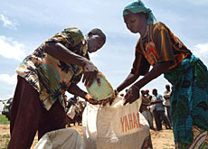 The distribution of emergency rations is underway in Niger