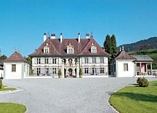 chateau a vendre suisse romande