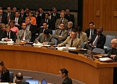 The report was presented to the UN Security Council on Wednesday