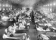 The Spanish flu epidemic affected huge numbers of people, killing between 20 and 40 million