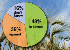 A clear majority of Swiss voters favour a moratorium on GMOs in agriculture
