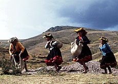 NGOs say development projects in the Andes and elsewhere should be a priority