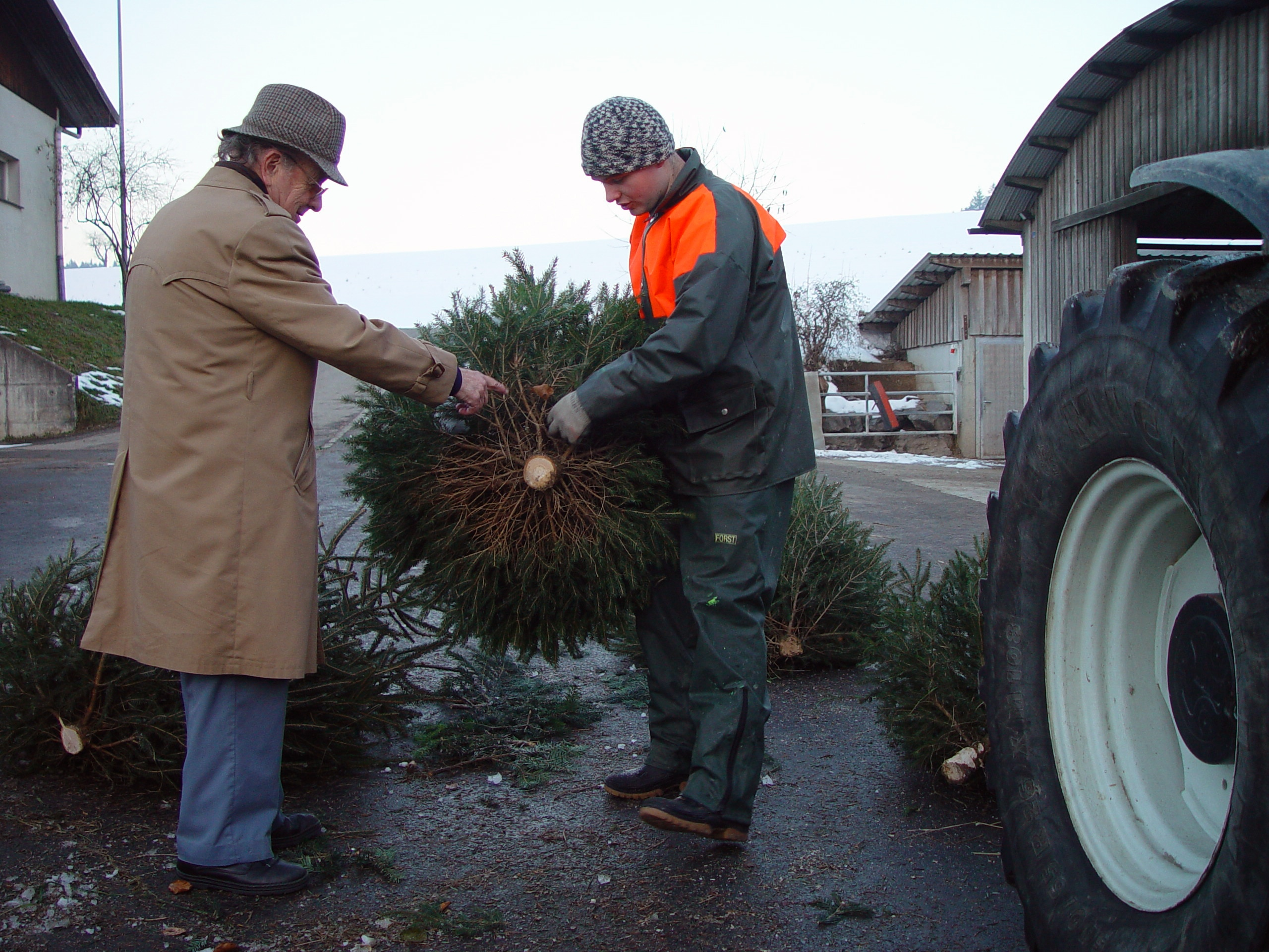 The Luder family delivers its trees to retailers or directly to private customers. Half of the family's income is derived from the Christmas tree business.