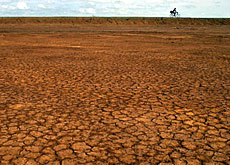 Experts tackle the effects of desertification - SWI swissinfo.ch