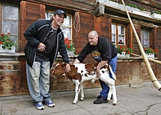 Patted calf: Ben Roethlisberger (left) with a two-day old calf, which he named Benita