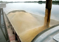 Some contaminated US rice was found in barges