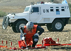 Demining costs over $300 million a year
