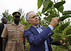 Leuenberger inspects drought-resistant crops that have been introduced with support from Bern University