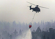 Super Puma helicopters like this one are fighting the fires