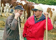 Dairy farmers are among the winners of the day (Imagepoint)