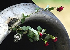 Red roses are fixed to the wreckage of the crashed Russian Tupolev lying in a field near Lake Constance in 2002