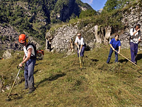 Volunteers maintaining mountain paths in a nature reserve in the southern Ticino region