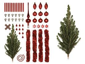 Geschichte Vom Weihnachtsbaum.Die Geschichte Des Christbaums Swi Swissinfo Ch