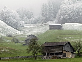 As winter turns to spring, Swiss farmers say conditions at the moment are excellent for fruit crops
