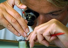 Watchmakers wanted - in the medium term at least