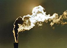 The companies seeking an exemption represent 40 per cent of industrial CO2 emissions