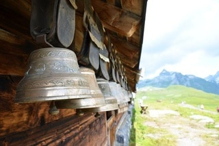 Cow bells hanging on a barn wall