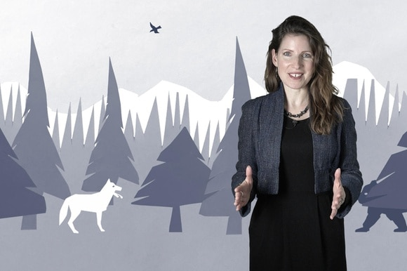 Presenter and wolf animation