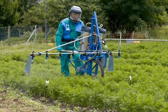 A man in a protective suit sprays pesticides over a field of crops