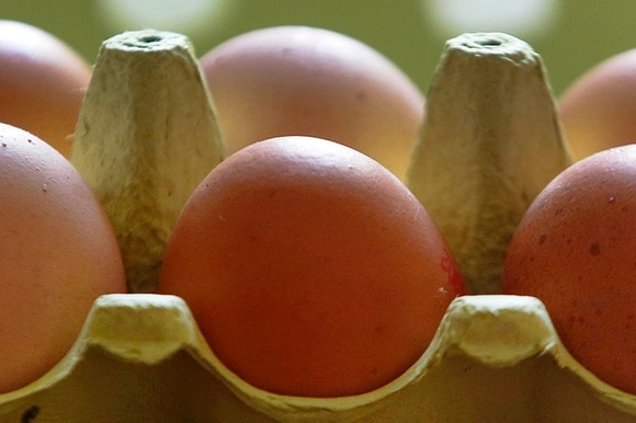 picture of German eggs.