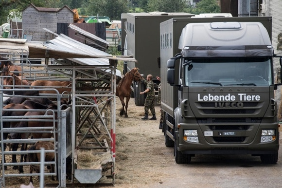 Horses being led to army lorries