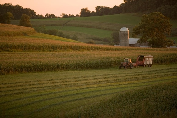 A tractor harvests corn in a field in Brookville, Pennsylvania, USA
