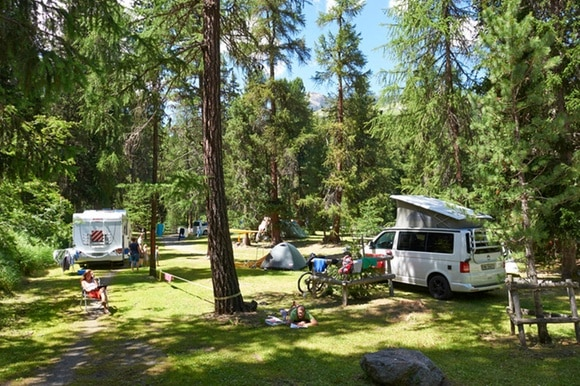 camp site with trees and campers