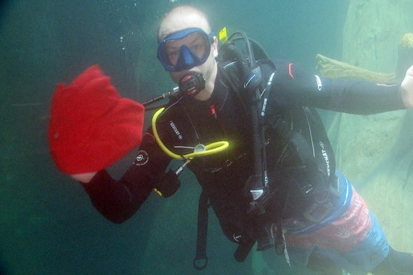 Diver cleaning aquarium