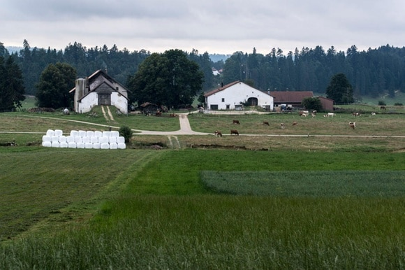Farm in Jura region