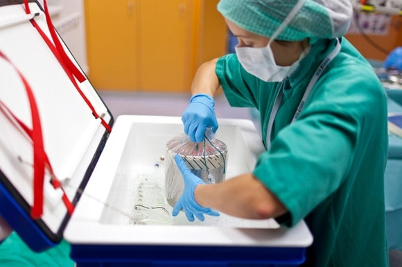 A heart being taken out of a refrigerated box ahead of a transplant operation
