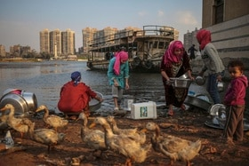 Women wash dishes using water from the Nile River in Cairo, Egypt