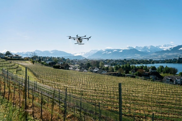 A large agricultural drone flies over a Swiss vineyard